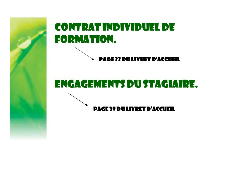 Contrat individuel de formation.