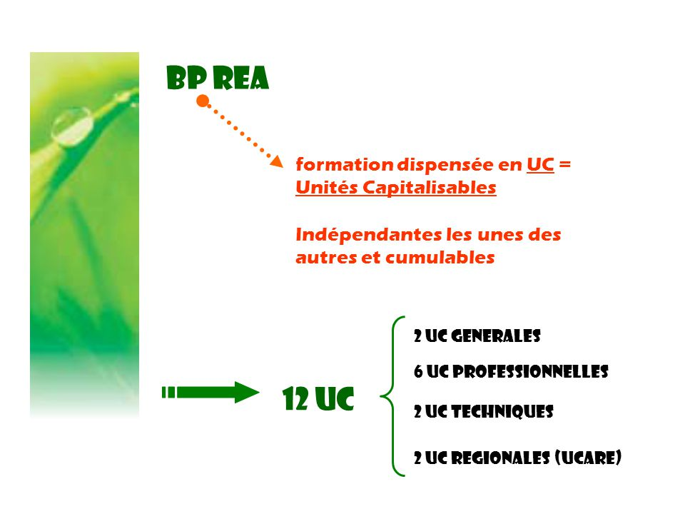 BP REA 12 UC formation dispensée en UC = Unités Capitalisables
