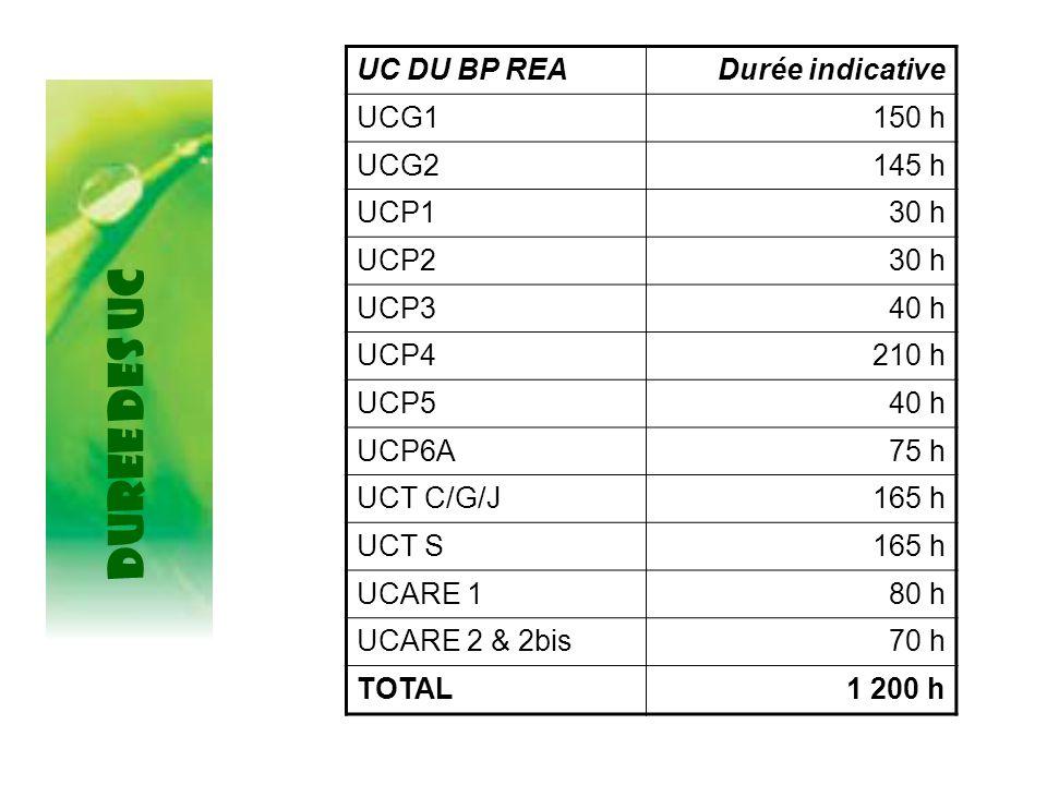 DUREE DES UC UC DU BP REA Durée indicative UCG1 150 h UCG2 145 h UCP1