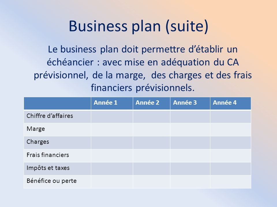 Business plan (suite)