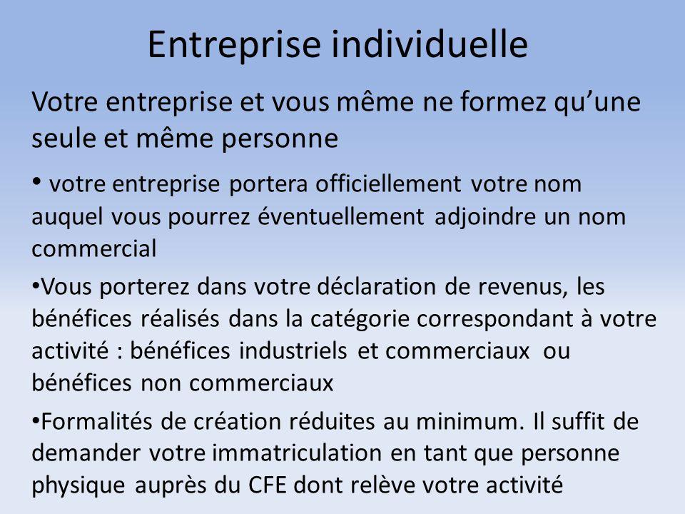 Entreprise individuelle