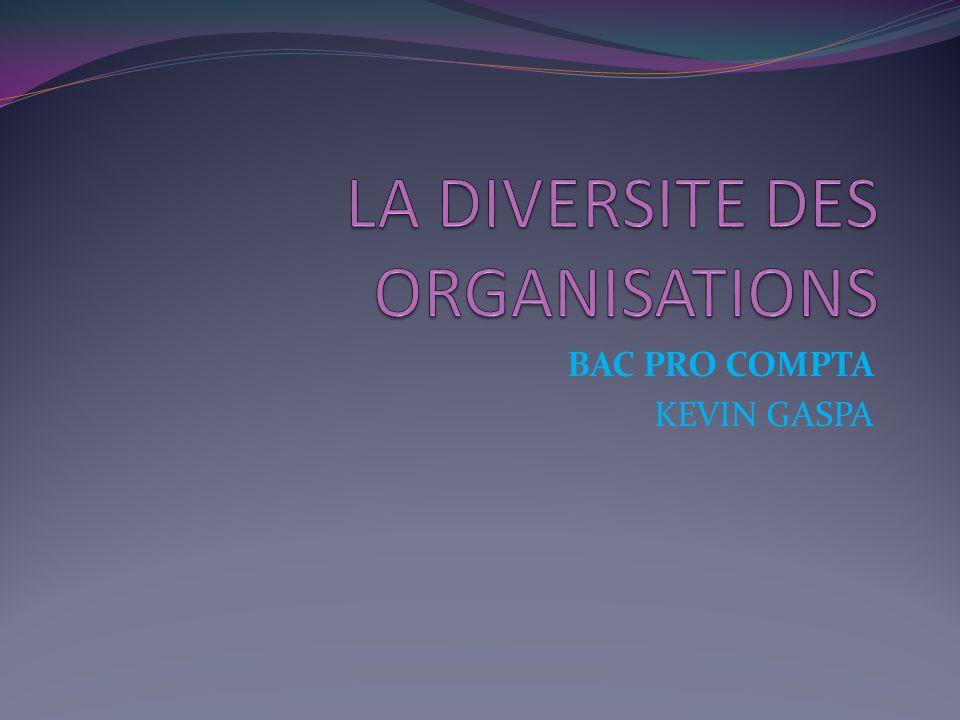 LA DIVERSITE DES ORGANISATIONS