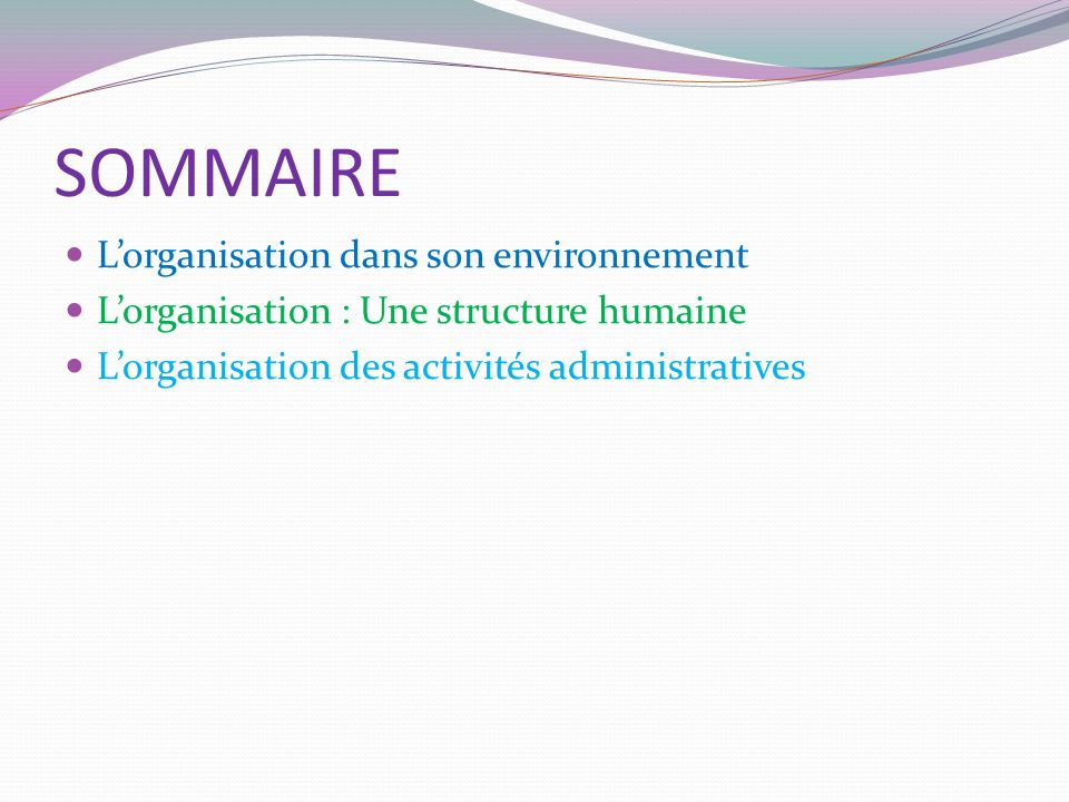 SOMMAIRE L'organisation dans son environnement