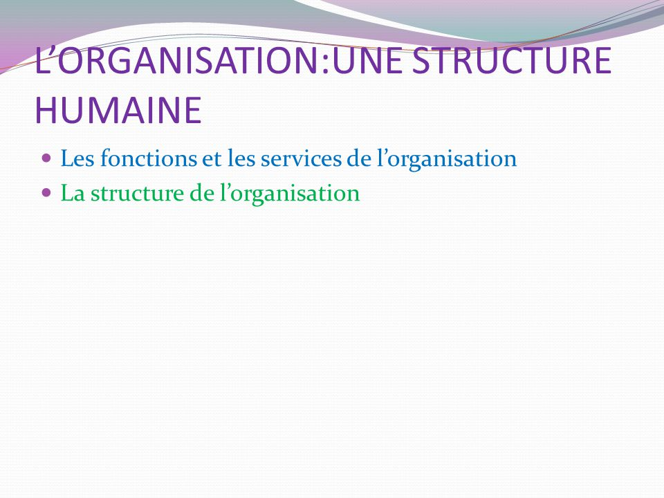 L'ORGANISATION:UNE STRUCTURE HUMAINE
