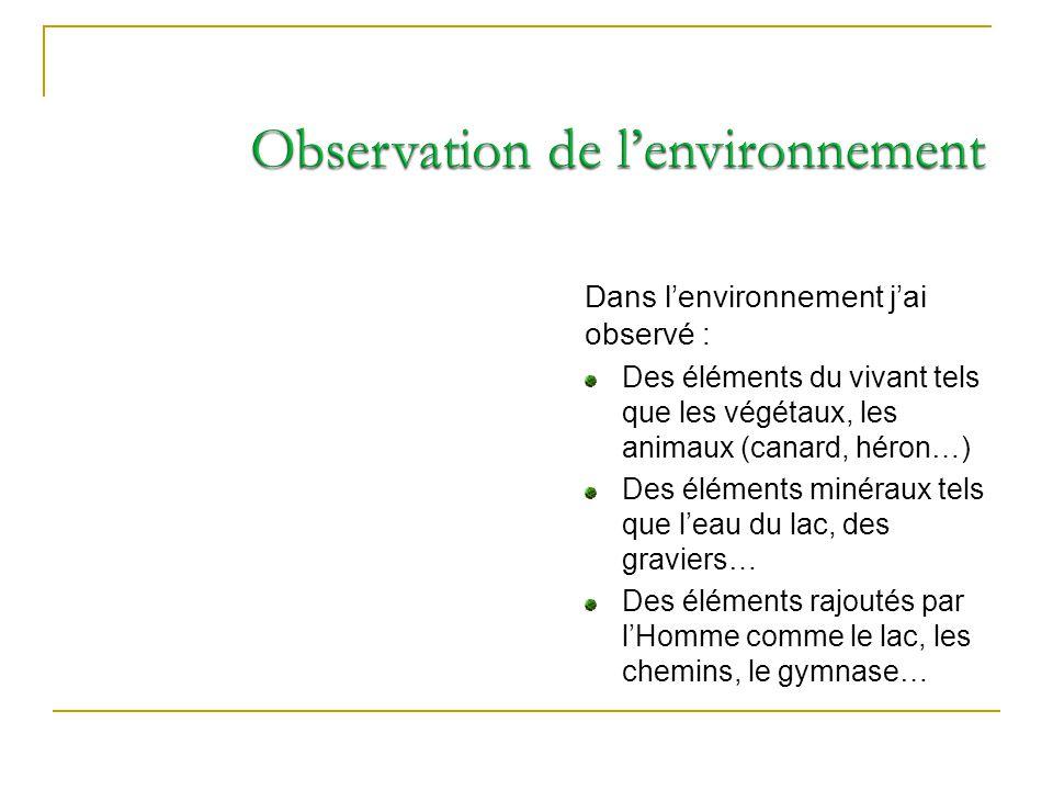 Observation de l'environnement
