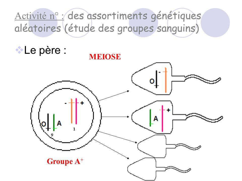 Activité n° : des assortiments génétiques aléatoires (étude des groupes sanguins)