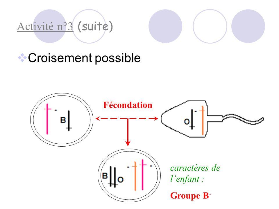 Croisement possible Activité n°3 (suite) Fécondation