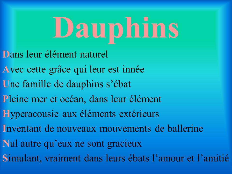 Dauphins D A U P H I N S Dans leur élément naturel