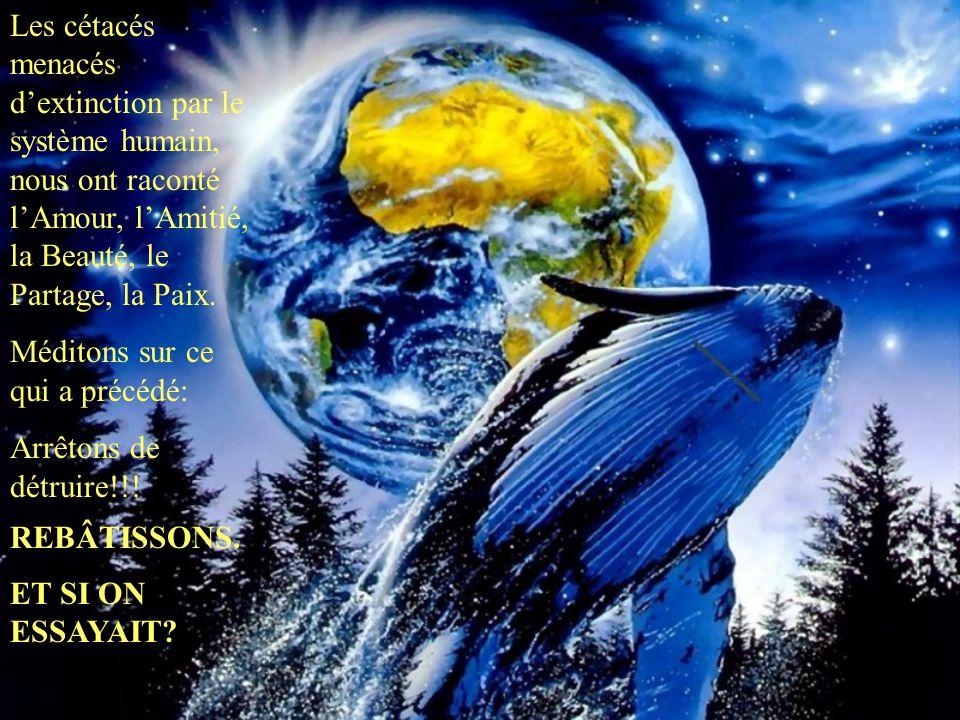 Les cétacés menacés d'extinction par le système humain, nous ont raconté l'Amour, l'Amitié, la Beauté, le Partage, la Paix.