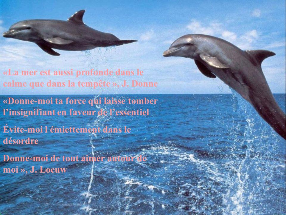 «La mer est aussi profonde dans le calme que dans la tempête », J