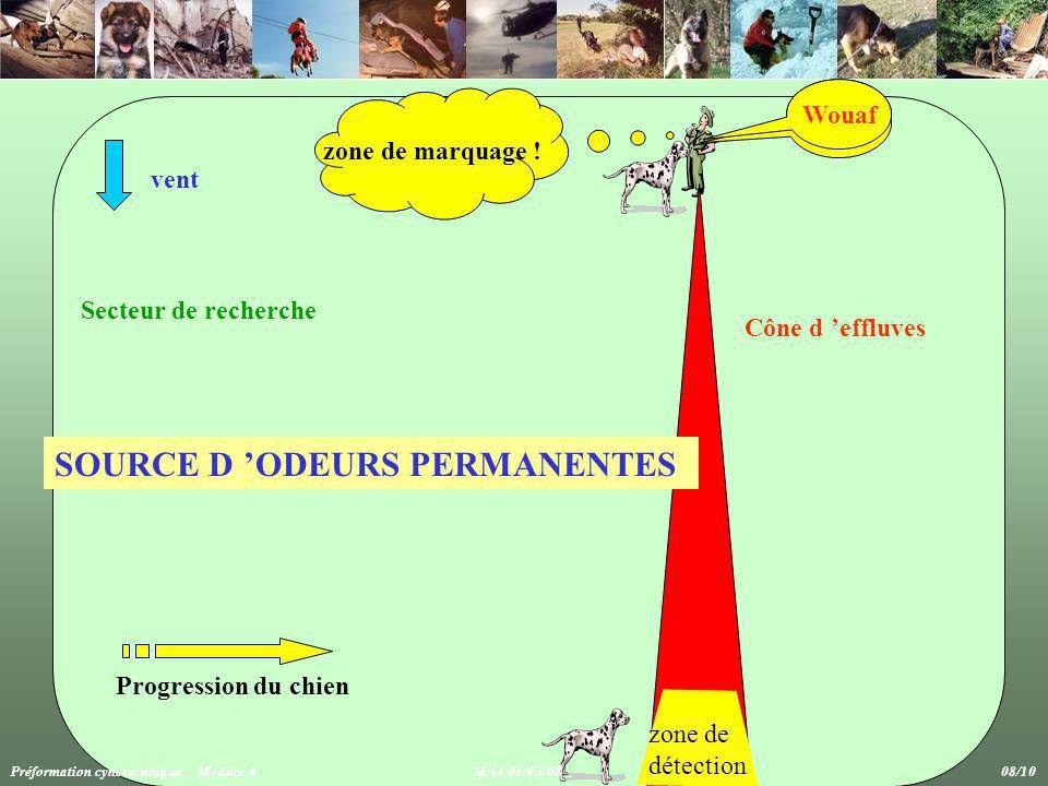 SOURCE D 'ODEURS PERMANENTES