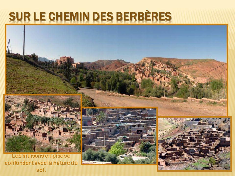 Sur le chemin des berbères
