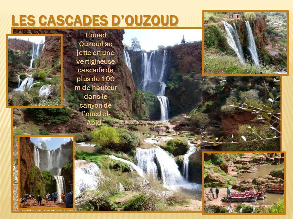 Les cascades d'ouzoud L'oued Ouzoud se jette en une vertigineuse cascade de plus de 100 m de hauteur dans le canyon de l'oued el-Abid.'