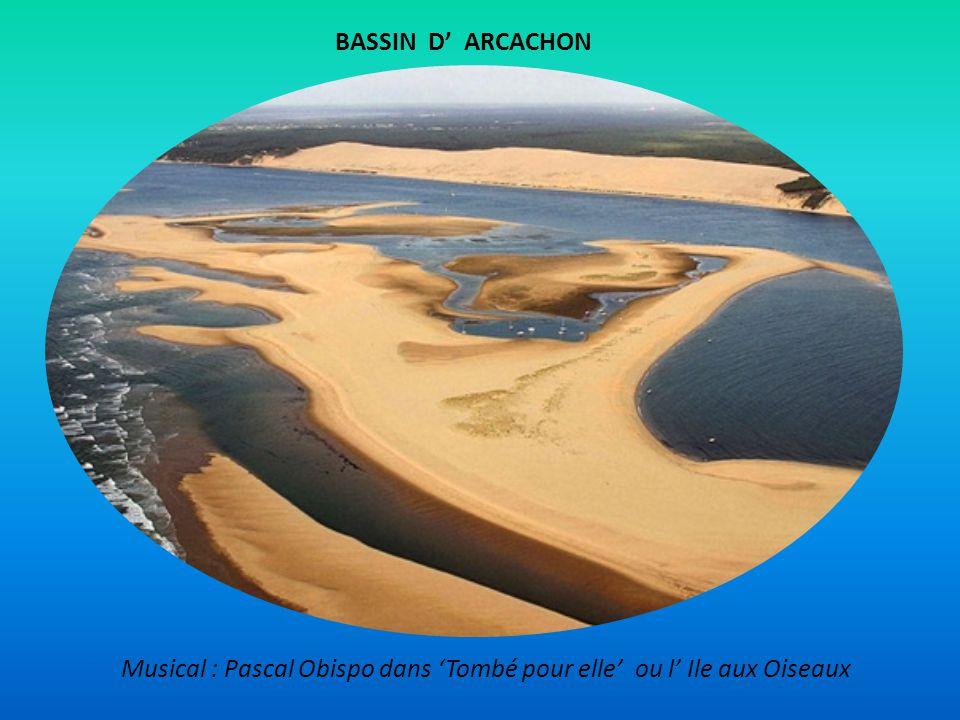 BASSIN D' ARCACHON Musical : Pascal Obispo dans 'Tombé pour elle' ou l' Ile aux Oiseaux