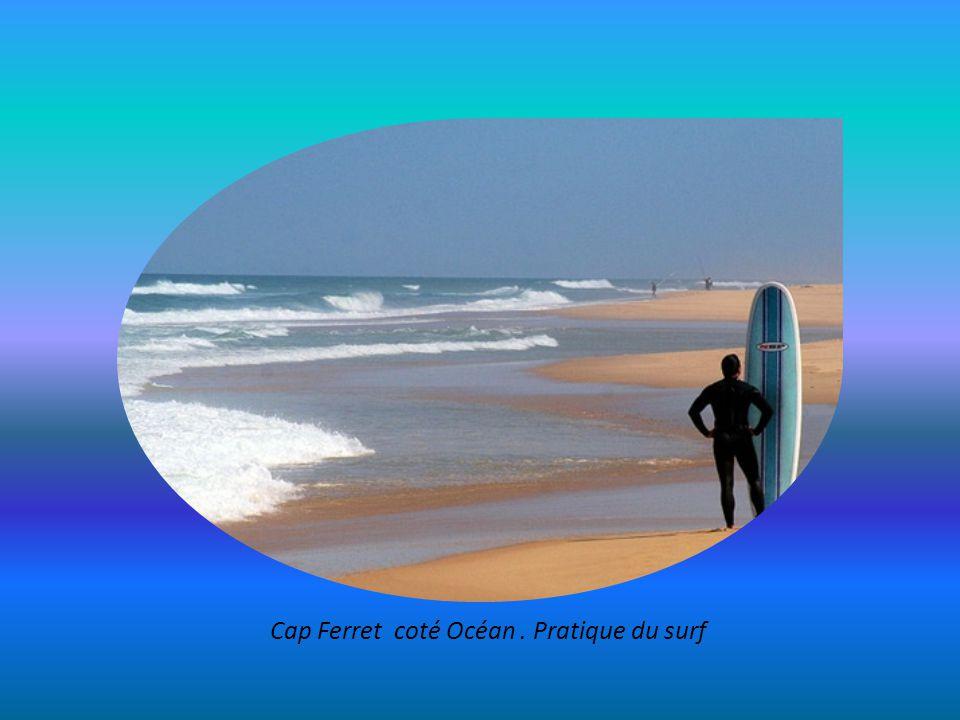 Cap Ferret coté Océan . Pratique du surf