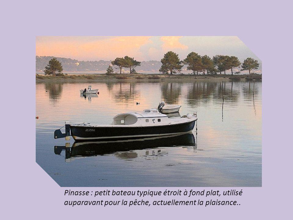 Pinasse : petit bateau typique étroit à fond plat, utilisé auparavant pour la pêche, actuellement la plaisance..