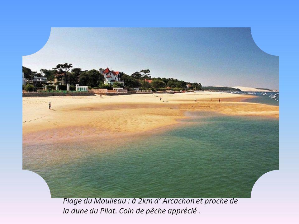 Plage du Moulleau : à 2km d' Arcachon et proche de la dune du Pilat