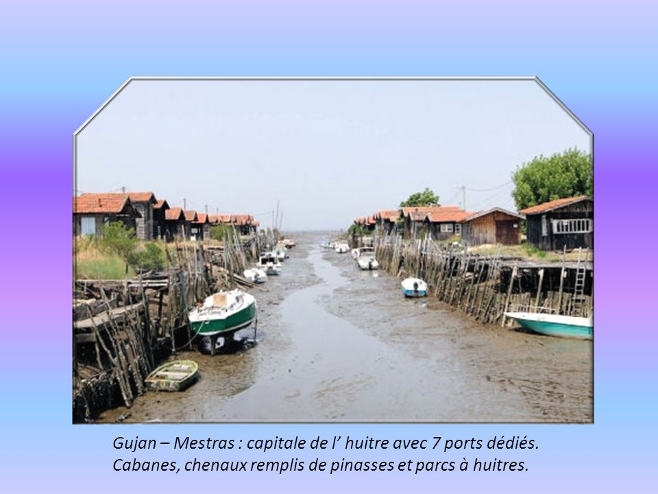 Gujan – Mestras : capitale de l' huitre avec 7 ports dédiés.