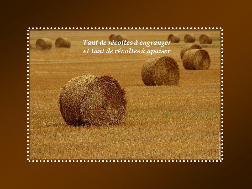 Tant de récoltes à engranger et tant de révoltes à apaiser