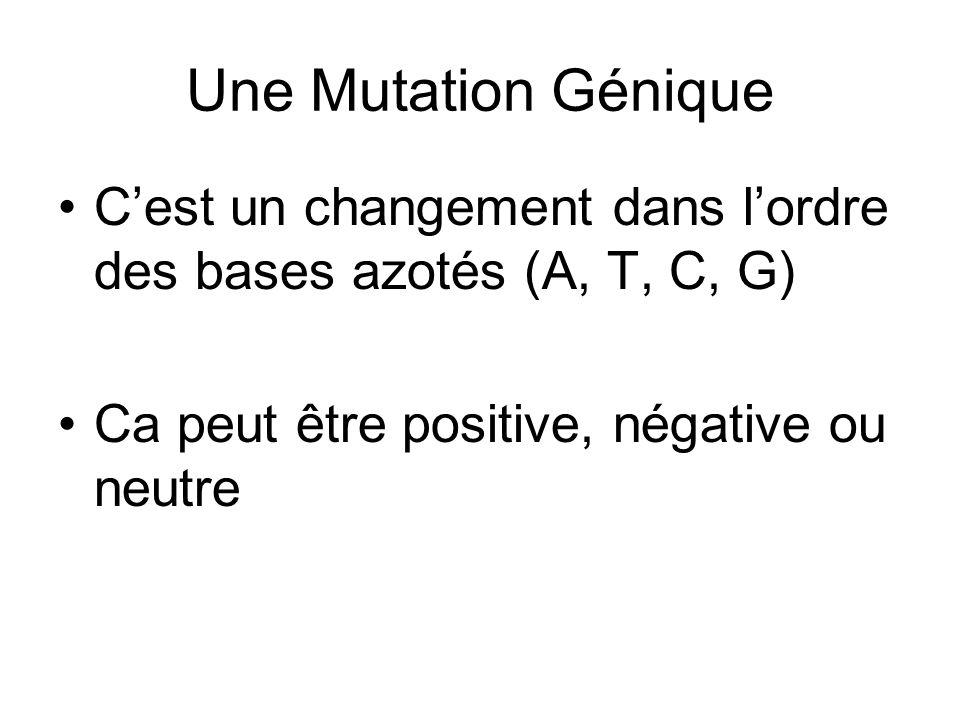 Une Mutation Génique C'est un changement dans l'ordre des bases azotés (A, T, C, G) Ca peut être positive, négative ou neutre.