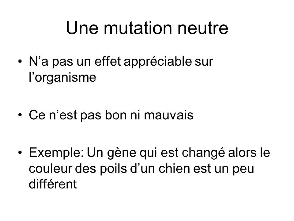 Une mutation neutre N'a pas un effet appréciable sur l'organisme