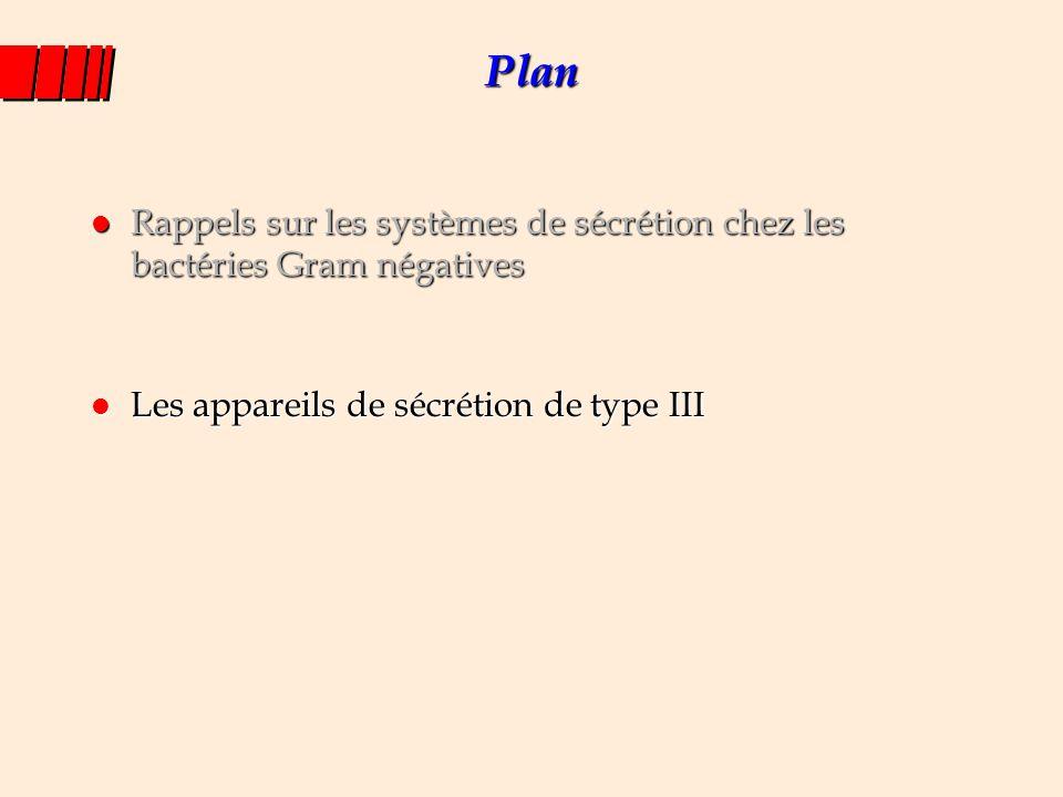 Plan Rappels sur les systèmes de sécrétion chez les bactéries Gram négatives.