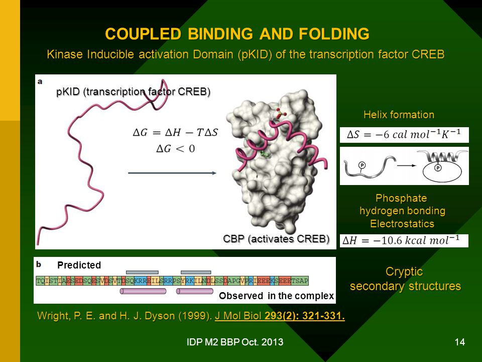 COUPLED BINDING AND FOLDING