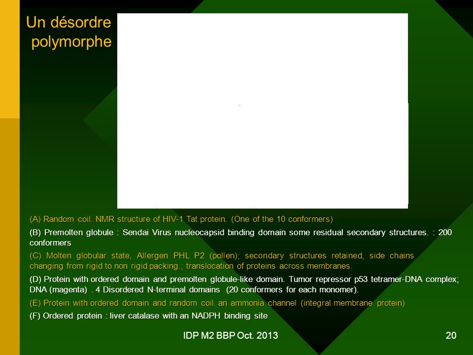 Un désordre polymorphe IDP M2 BBP Oct. 2013
