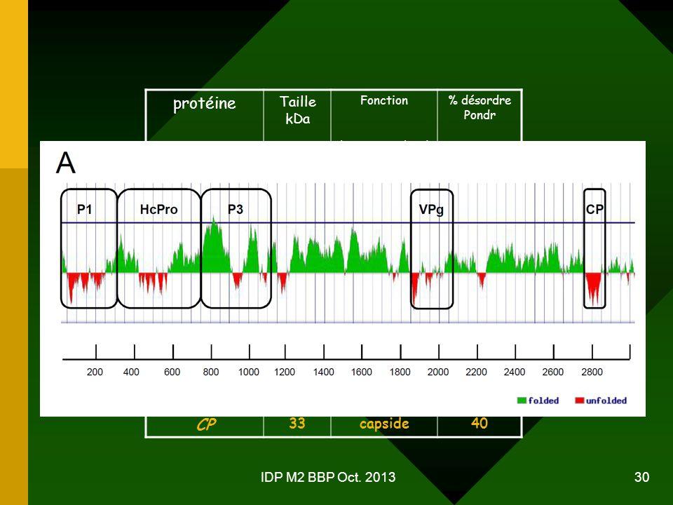 protéine P1 HcPro P3 6K1 CI 6K2 VPg Pro NIb CP Taille kDa 52 44 55
