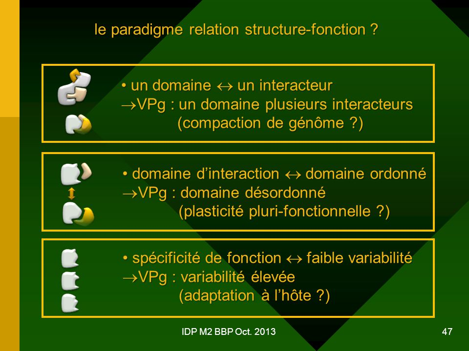 le paradigme relation structure-fonction