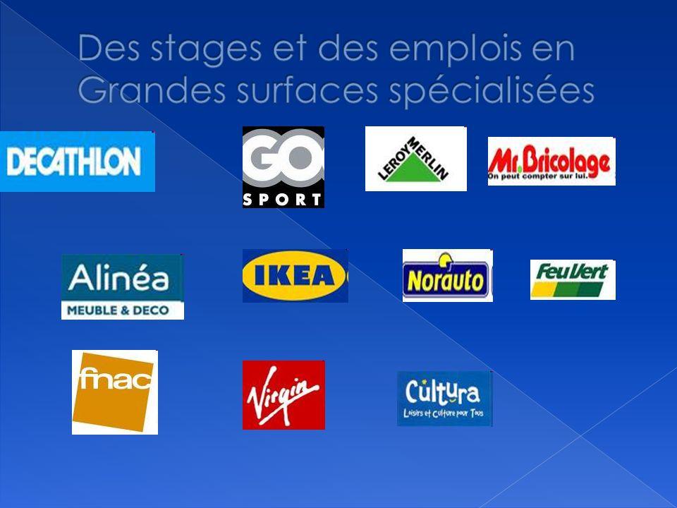 Des stages et des emplois en Grandes surfaces spécialisées