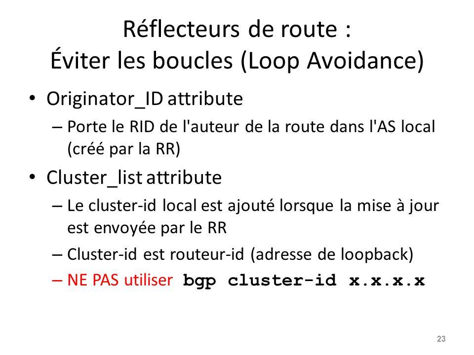 Réflecteurs de route : Éviter les boucles (Loop Avoidance)