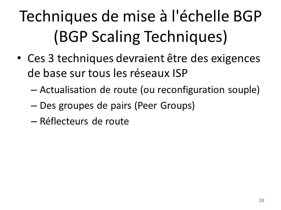 Techniques de mise à l échelle BGP (BGP Scaling Techniques)