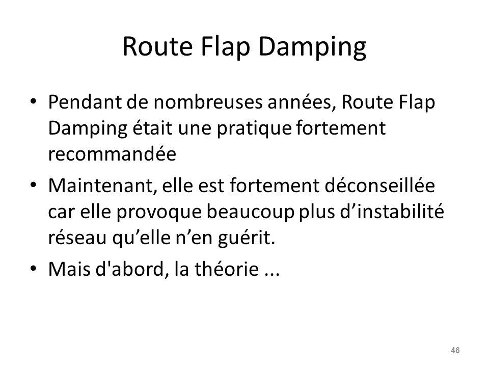 Route Flap Damping Pendant de nombreuses années, Route Flap Damping était une pratique fortement recommandée.