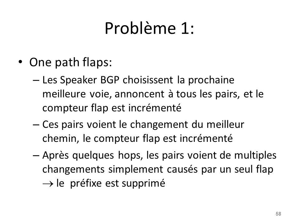 Problème 1: One path flaps: