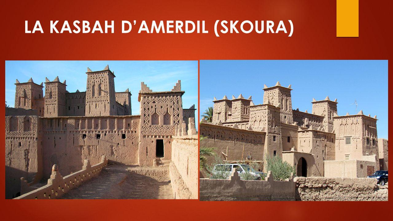 LA KASBAH D'AMERDIL (SKOURA)