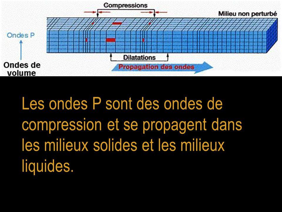 Les ondes P sont des ondes de compression et se propagent dans les milieux solides et les milieux liquides.