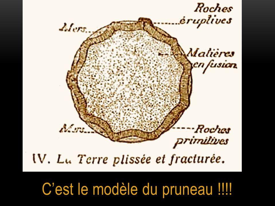 C'est le modèle du pruneau !!!!
