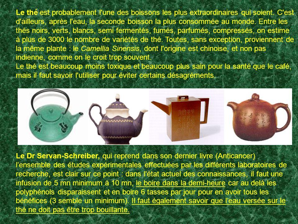 Le thé est probablement l une des boissons les plus extraordinaires qui soient. C est d ailleurs, après l eau, la seconde boisson la plus consommée au monde. Entre les thés noirs, verts, blancs, semi fermentés, fumés, parfumés, compressés, on estime à plus de 3000 le nombre de variétés de thé. Toutes, sans exception, proviennent de la même plante : le Camellia Sinensis, dont l origine est chinoise, et non pas indienne, comme on le croit trop souvent.