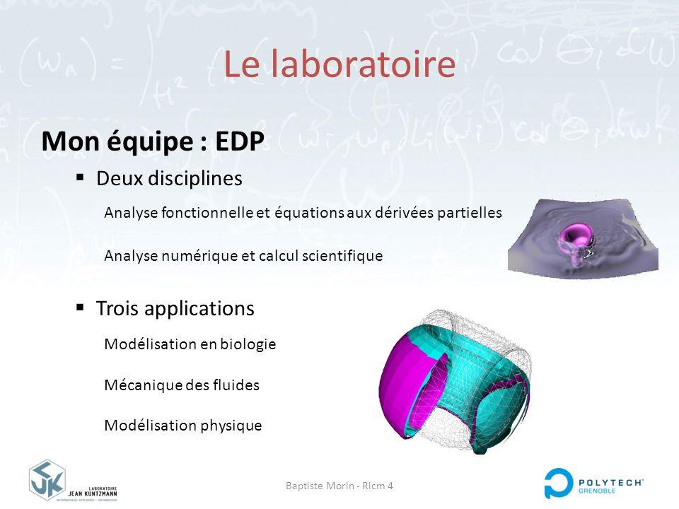 Le laboratoire Mon équipe : EDP Deux disciplines Trois applications