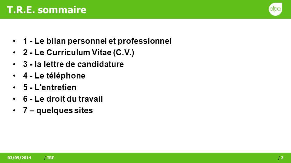 T.R.E. sommaire 1 - Le bilan personnel et professionnel