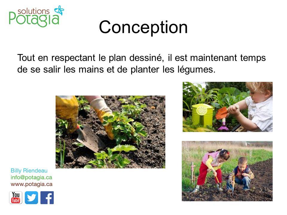 Conception Tout en respectant le plan dessiné, il est maintenant temps de se salir les mains et de planter les légumes.