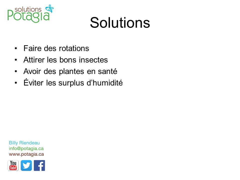 Solutions Faire des rotations Attirer les bons insectes