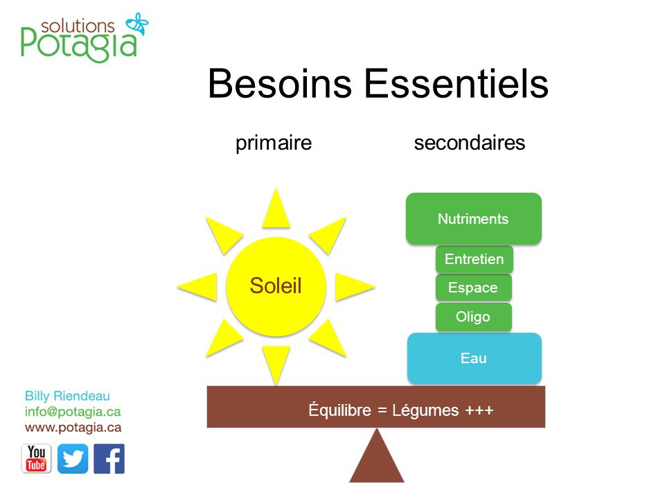 Besoins Essentiels Soleil Équilibre = Légumes +++ primaire Entretien