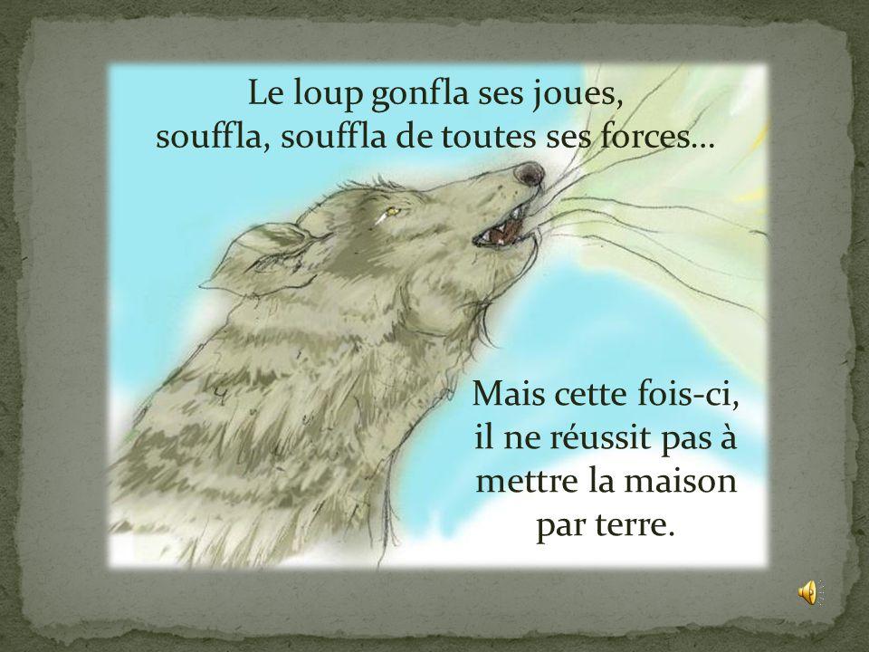 Le loup gonfla ses joues, souffla, souffla de toutes ses forces…