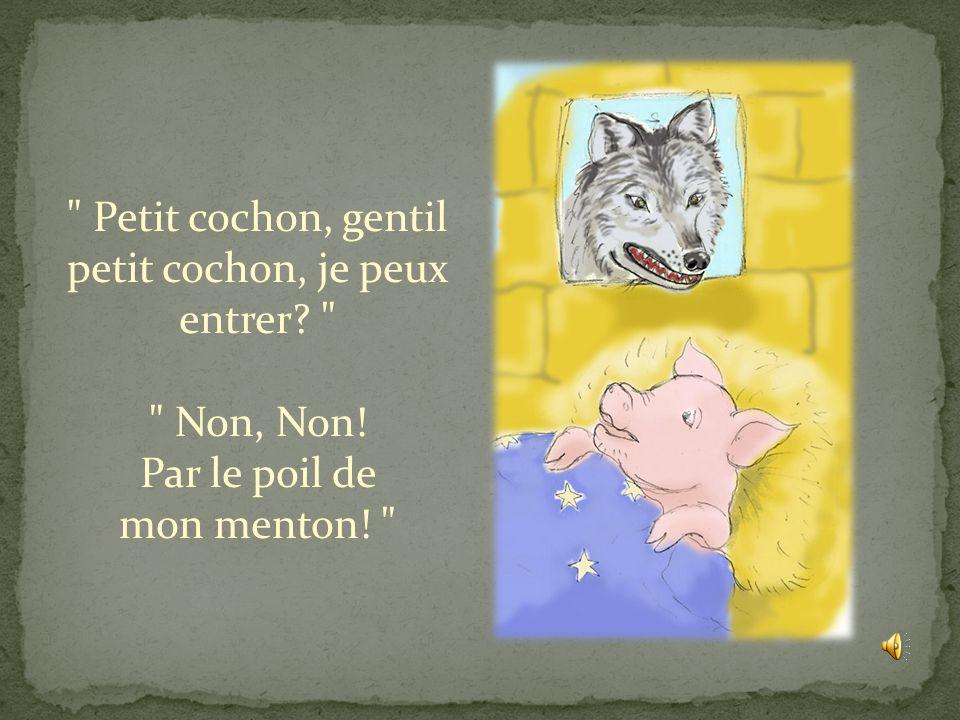 Petit cochon, gentil petit cochon, je peux entrer. Non, Non