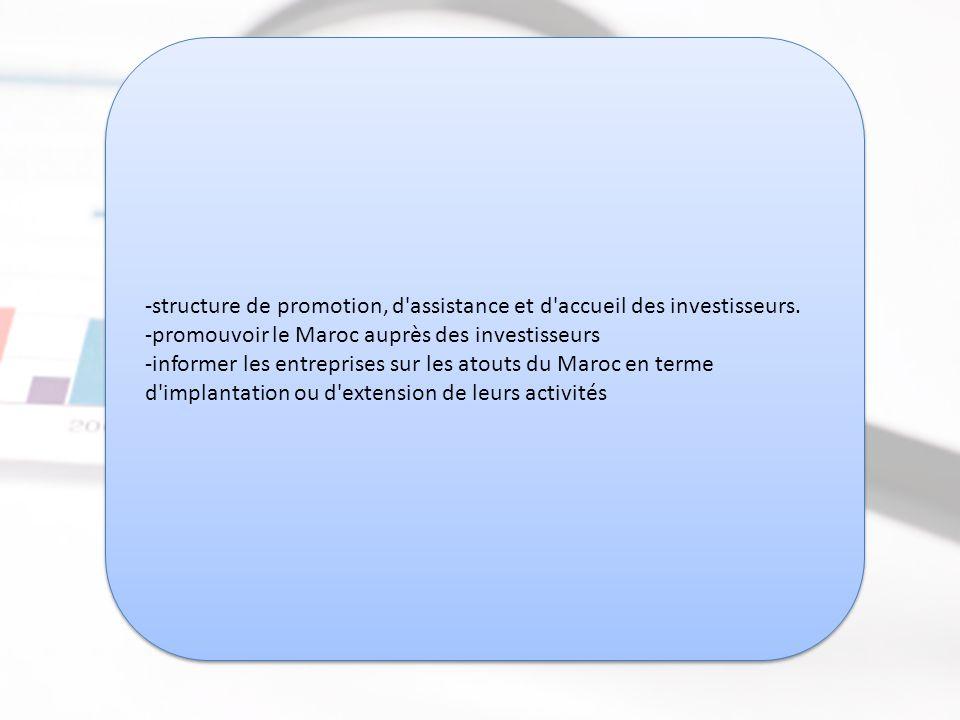 Direction des Investissements Extérieurs (DIE)