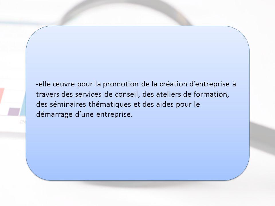 -elle œuvre pour la promotion de la création d'entreprise à travers des services de conseil, des ateliers de formation, des séminaires thématiques et des aides pour le démarrage d'une entreprise.