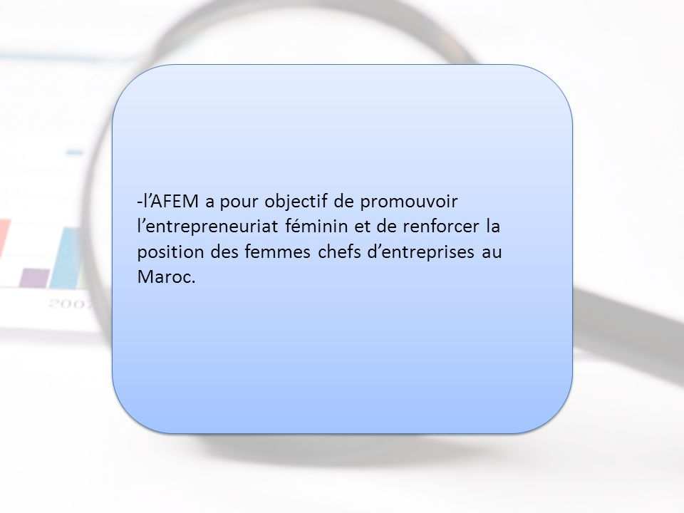 Association des Femmes Chefs d Entreprise du Maroc (AFEM)