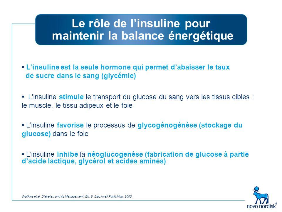 Le rôle de l'insuline pour maintenir la balance énergétique
